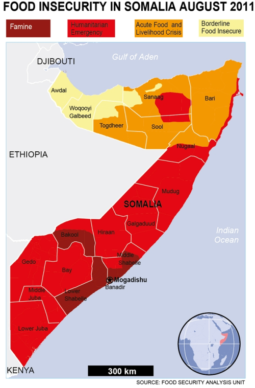Food Insecurity In Somalia